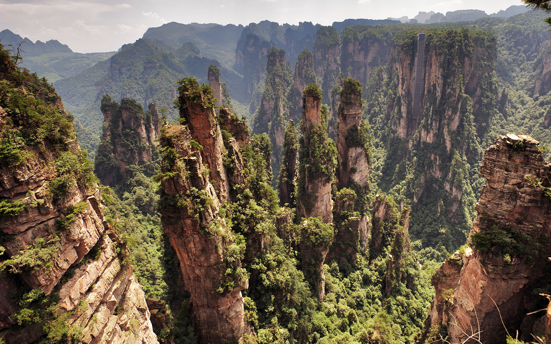 Natural Forest Park of Zhangjiaje, China