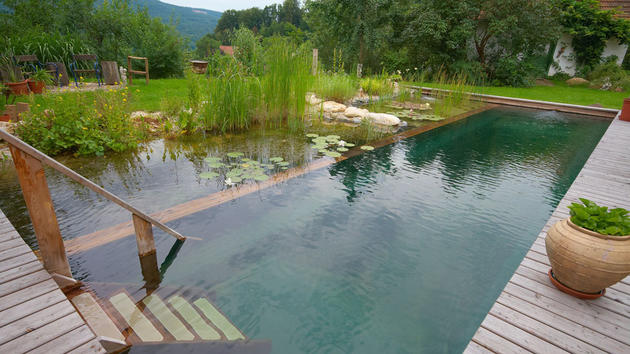 Stairs leading into a natural pool