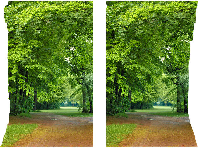 Airtight Frame III Green World 3D photo