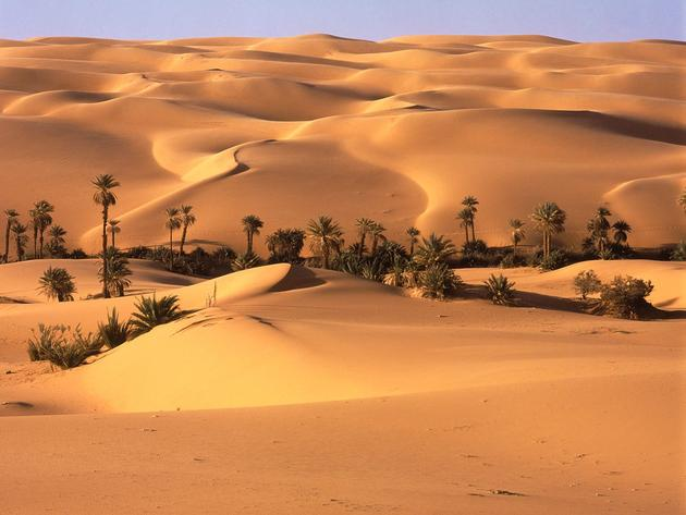 A desert oasis somewhere in Libya