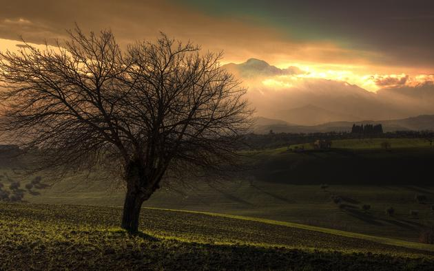 Country side hills tree hd wallpaper