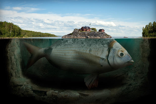 Fishy Island by Erik Johansson