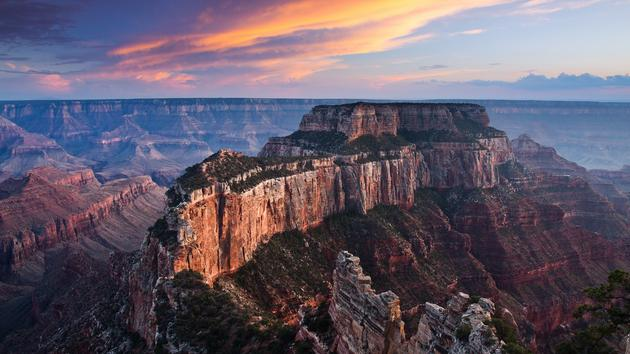 Grand Canyon Arizona Wildlife USA HD Wallpaper