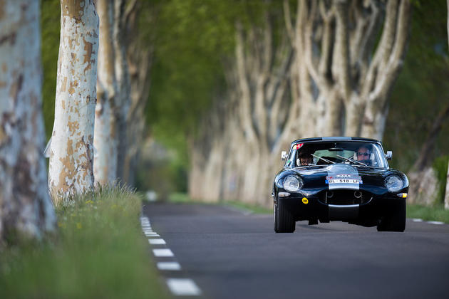 Jaguar E-type between old trees
