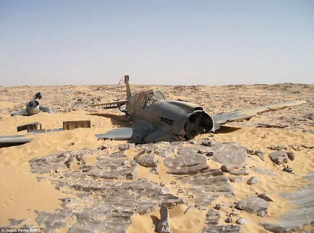 A rare Preserved wreck of a WW2 Fighter Plane P40