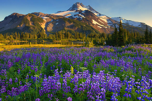 Jefferson Park Mountains by Kevin Mcneal