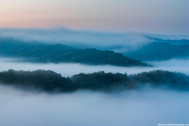 Mike Hollingshead Nature Photography