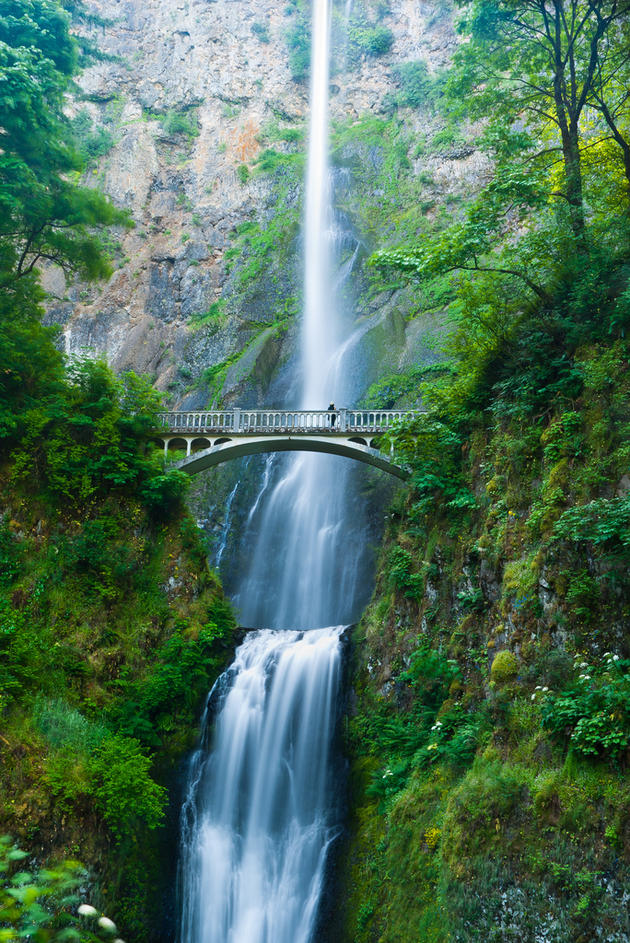 Multnomah Falls of Oregon  by Fandarwin@Flickr