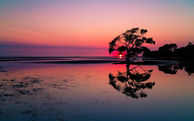 Nudgee Beach by Steve Greaves