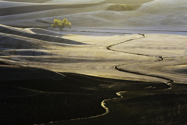 Beautiful hills of Palouse located in Washington and oregon