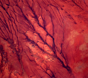 Space Photos by Andre Kuipers Preview