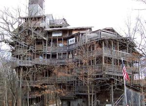 Largest tree house