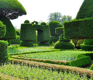Levens Hall Gardens Beautiful