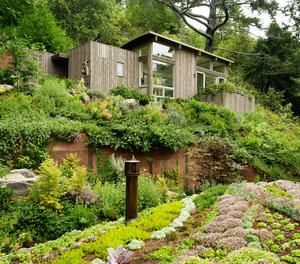 Mill Valley Cabins by Feldman Architecture in San Francisco