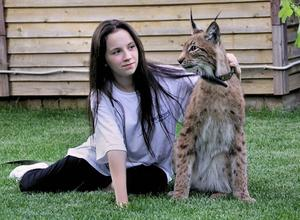 Pet Lynx beside one of the family members in Kaluga, Russia
