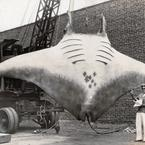 Great Manta Ray captured by capt kahn 1933