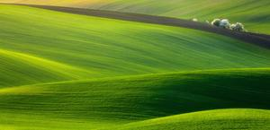 Hills of Moravia, Czech Republic HD Wallpaper