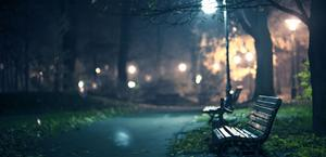 A Night Walk in the Park HD Big Wallpaper