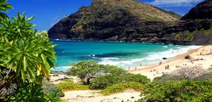 Oahu Beach in Hawaii Wallpaper HD