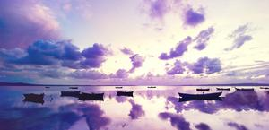 purple sunset hd wallpaper
