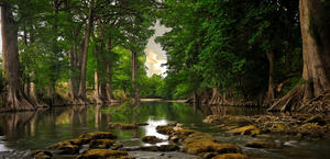 Secluded river