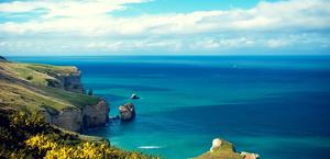 Shores of New Zealand Background HQ