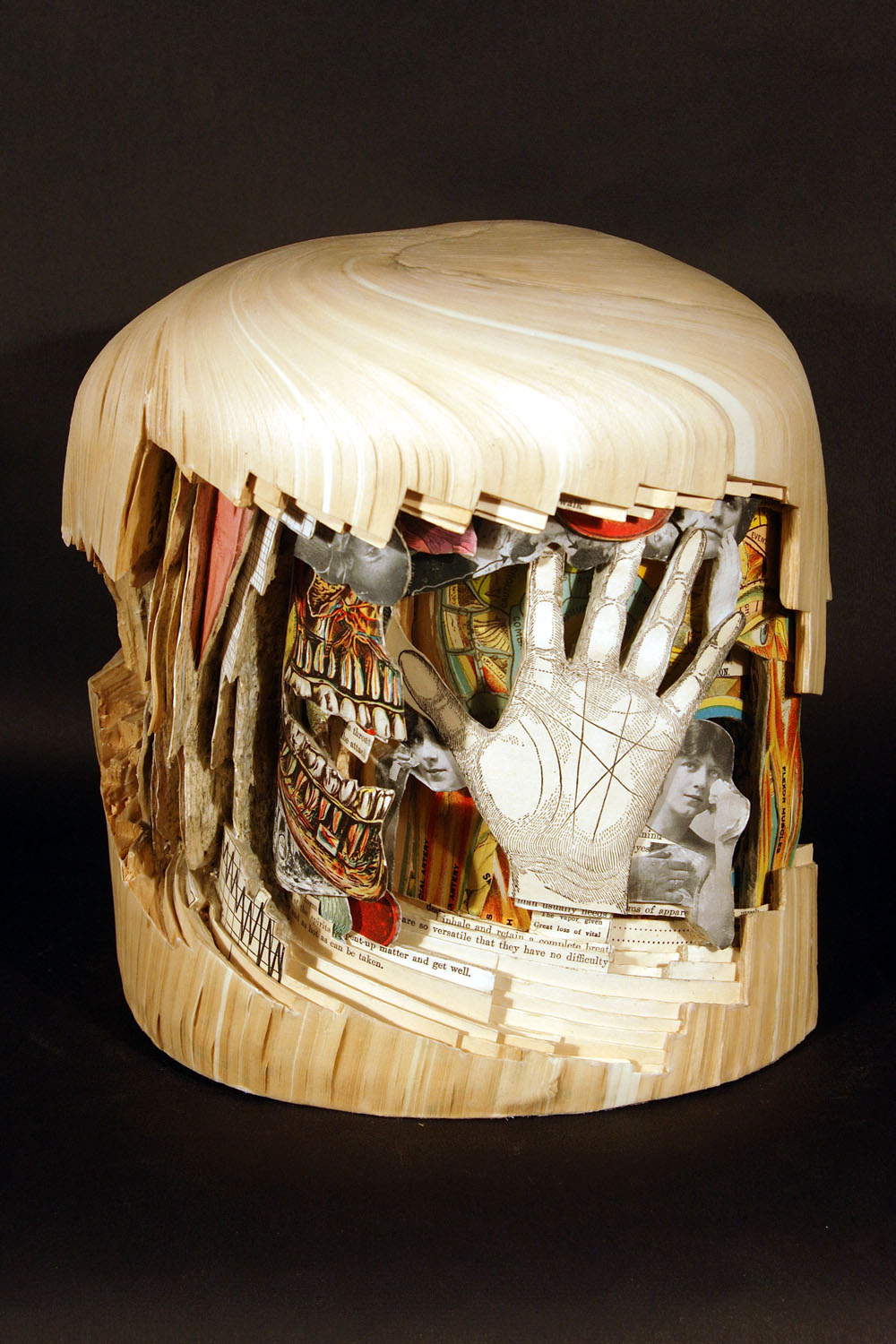 Interesting book carving art by brian dettmer pics