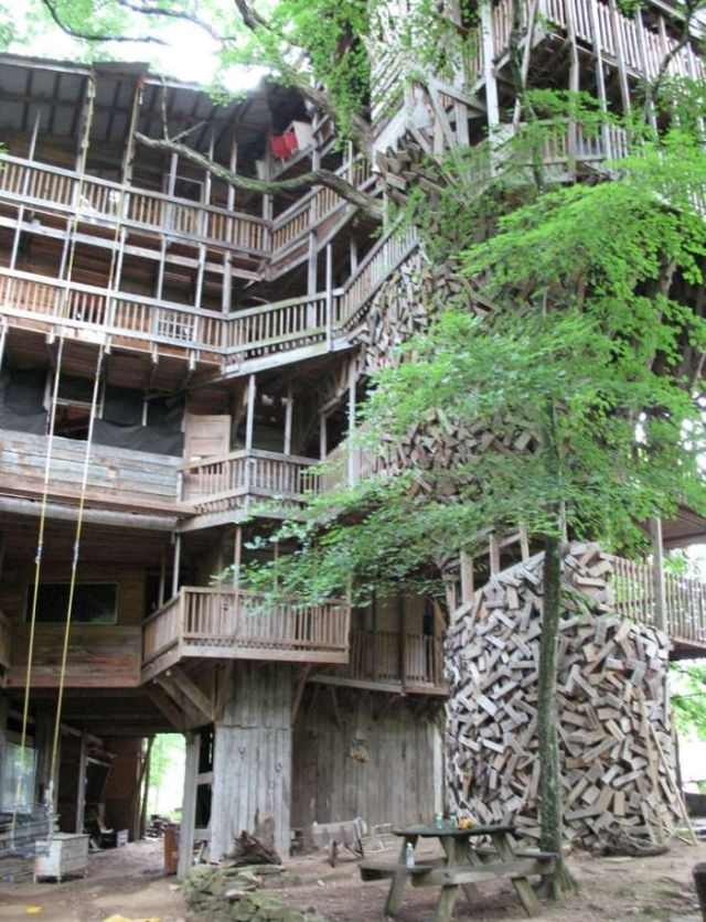 biggest tree house in the world