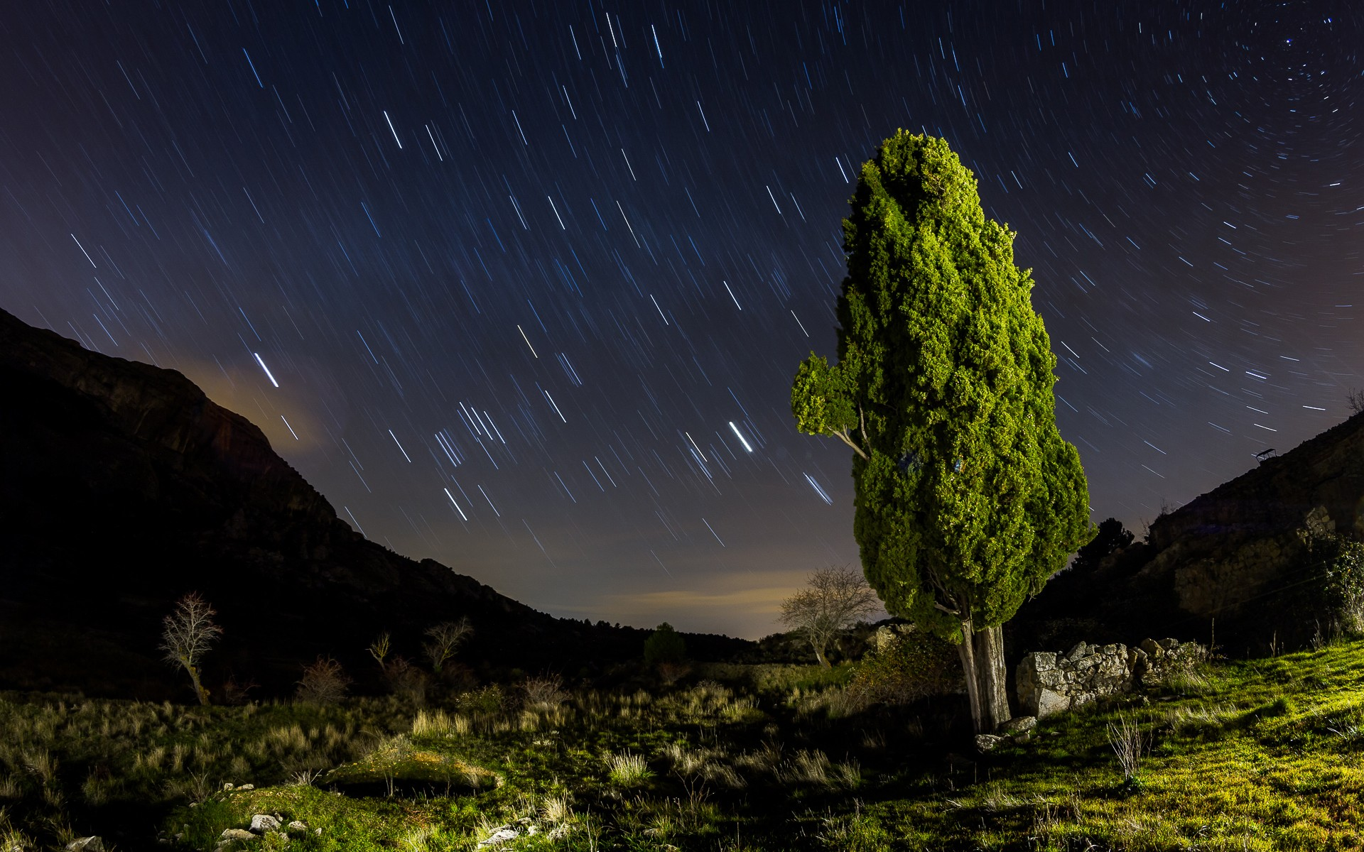 daily wallpaper: star trails at night | i like to waste my time