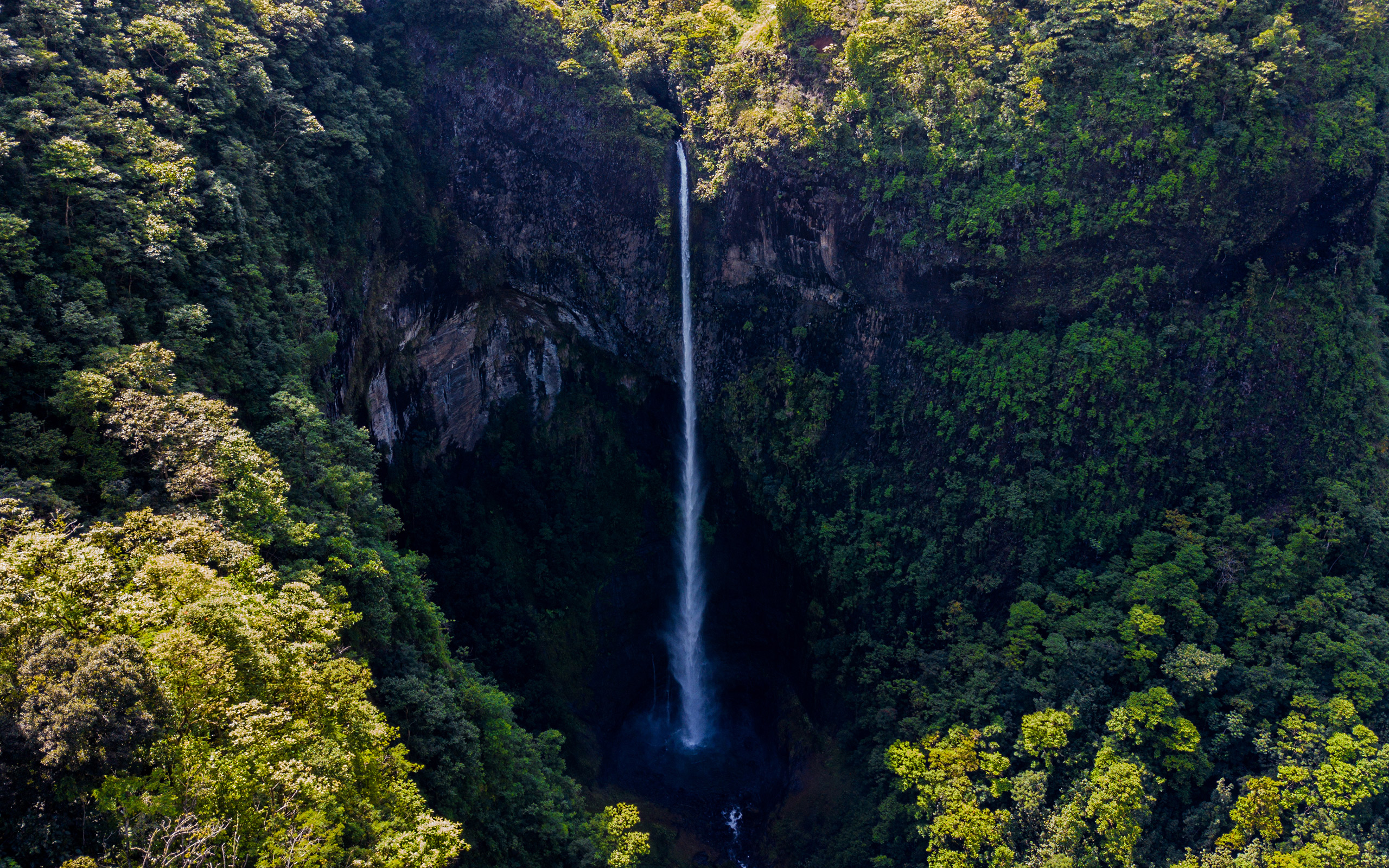 Daily wallpaper tropical waterfall i like to waste my time voltagebd Image collections