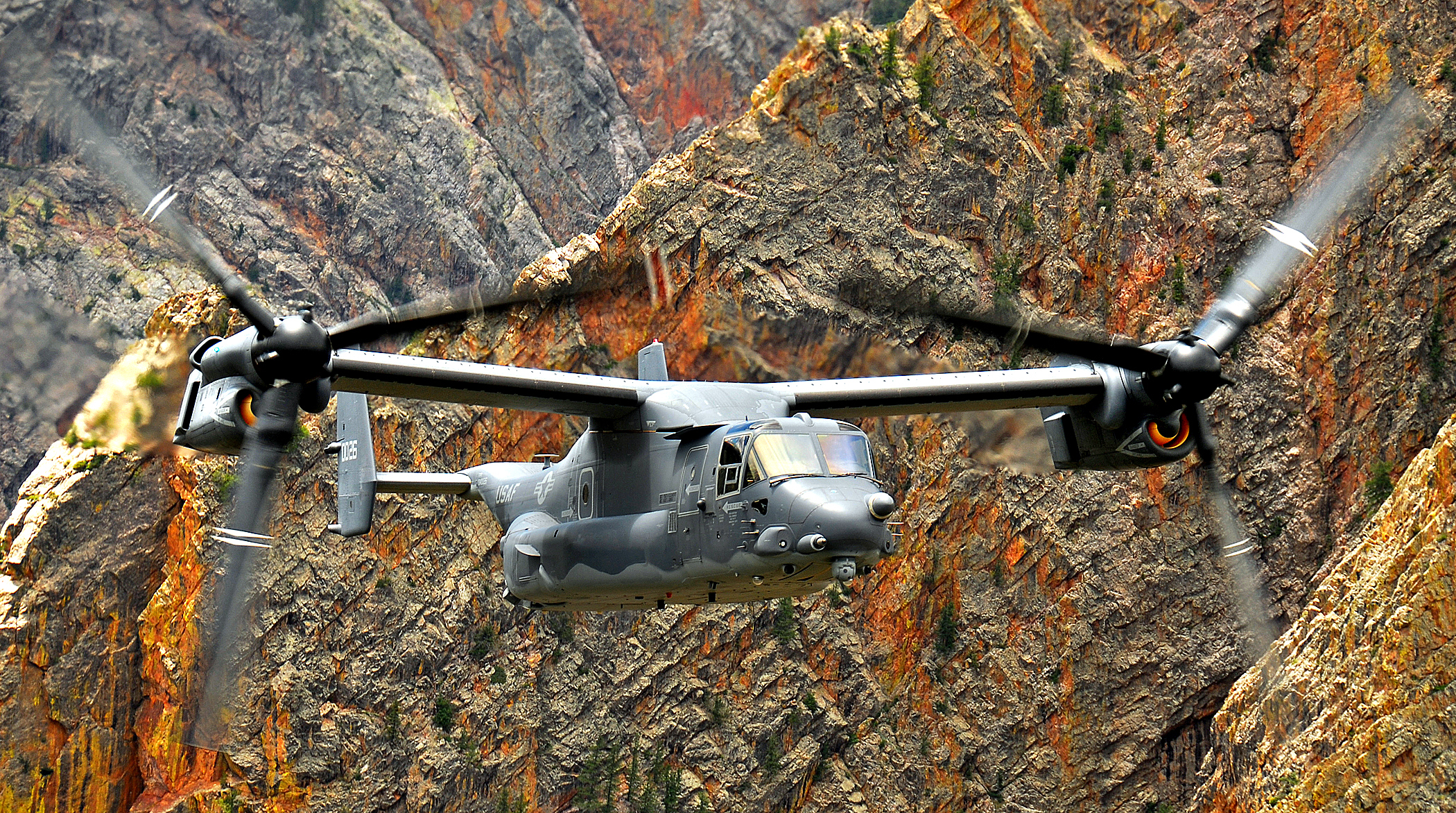 daily wallpaper  osprey v22 caught in